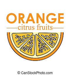 orange citrus fruit over white background vector ...