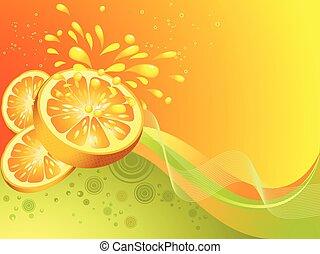Orange citrus fruit. Vector illustr