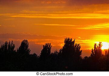 Orange cloudy sunset