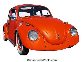orange, coléoptère