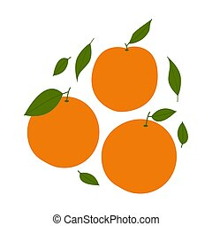 Orange. Colored Vector Illustration EPS.