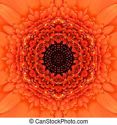 Orange Concentric Flower Center. Mandala Kaleidoscopic...
