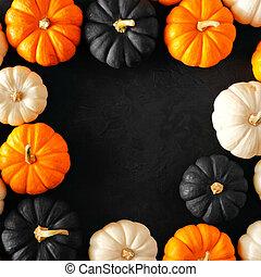orange, contre, couleurs, noir, blanc, cadre, fond, automne, halloween, citrouille, carrée