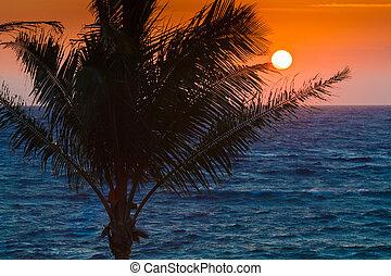orange, coucher soleil