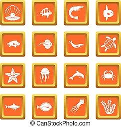 orange, ensemble, animaux, mer, icônes