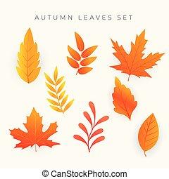 orange, feuilles automne, ensemble