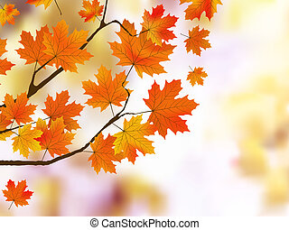 orange, feuilles automne, peu profond, foyer.