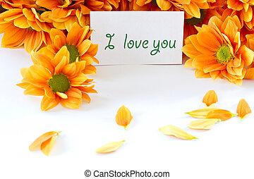 orange flowers Chrysanthemum - Chrysanthemum orange flowers...