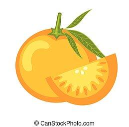 orange, frais, couper, vecteur
