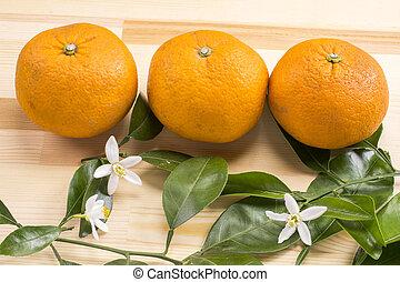 Orange fruit and flowers