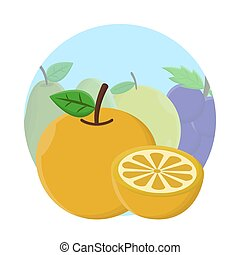 Orange Fruit Flat Icon Vector