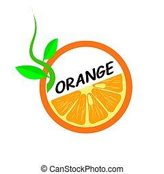 Orange Fruit icons flat style, Vector Illustration.