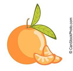 Orange Fruit Isolated on White BG
