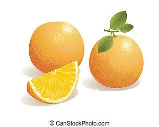 Orange Fruit - Realistic vector illustration of an orange...