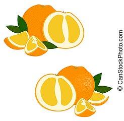 Orange fruit. Set of fresh whole and cut orange fruit and slices on white background. Citrus fruit. Vector illustration
