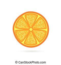 orange fruit slice vector
