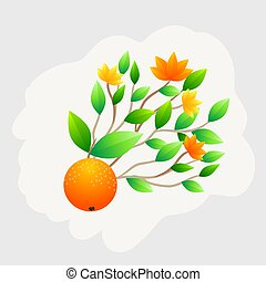 Orange fruit whole with green leaves isolated on white background. Vector Illustration