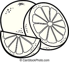 Orange fruits vector cartoon BW