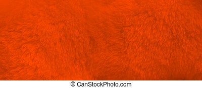 Orange fur background close up view. Banner
