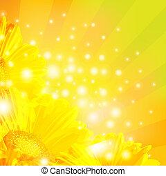 Orange Gerber With Sunburst