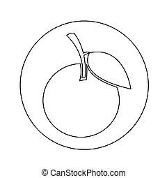 orange icon illustration design