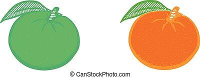 orange icon on white background
