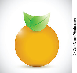 orange illustration design