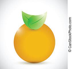 orange illustration design