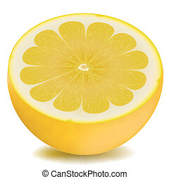 orange - illustration of half piece of lemon on isolated...