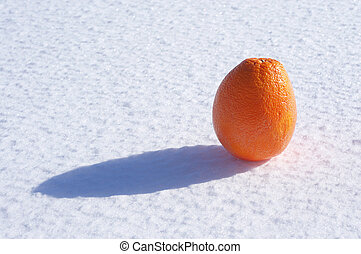 Orange in the snow on a sunny day