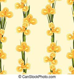 Orange Iris Flower on Beige Ivory Background