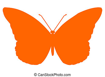 Orange isolated vector Butterfly insect on white background.