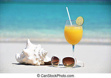 Orange juice, sunglasses and conch on the beach of Exuma, Bahamas