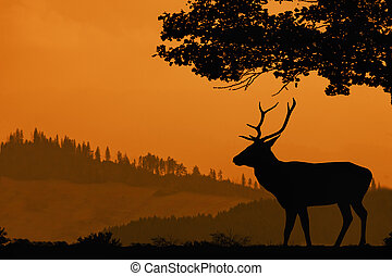 Orange landscape with a silhouette of a deer