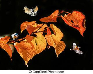 Orange leaves tree and birds