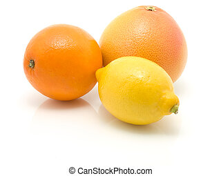 orange, lemon and grapefruit on white background
