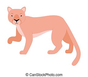 Orange Lioness. Vector illustration on a white background.