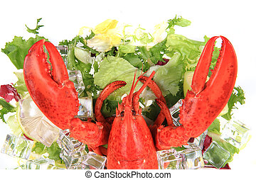 orange lobster isolated