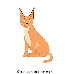 Orange Lynx. Vector illustration on a white background.