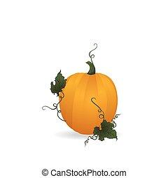 orange, mûre, citrouille