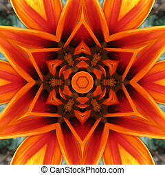 Orange Mandala Flower