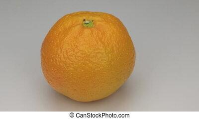 Orange  mandarin rotates on its axis.
