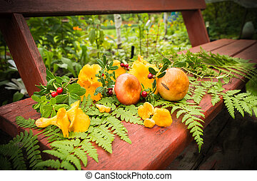 Orange mushrooms with forest leaves on wooden banch