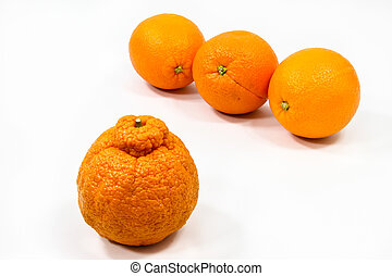 Orange Oddity - Three smooth oranges keep their distance...