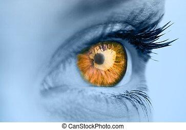 orange, oeil, figure, bleu