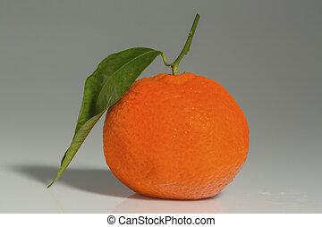 orange on white background - an orange lies on a white ...