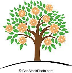 Orange or tangerine tree with green leaves. Vector...