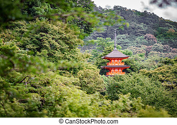 Orange painted wooden temple in the forest