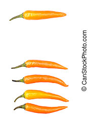 Orange peppers isolated over white vertical