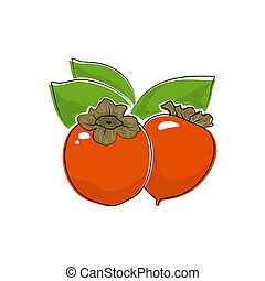 Persimmon Isolated on White